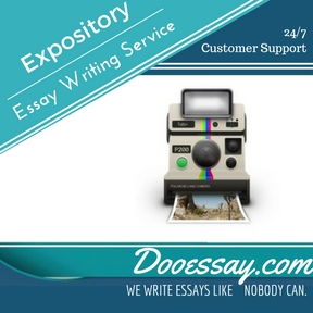 Expository Essay Writing Service
