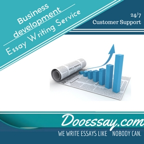 Essay writing development