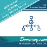 Distribution strategy essay writing service