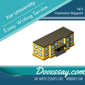 Essay Writing Service For University