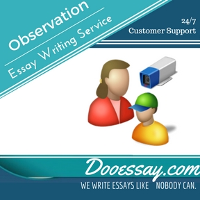 Observation Essay Writing Service